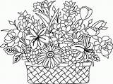 Coloring Flower Basket Flowers Colouring Drawing Printable Bouquet Clipart Getdrawings Popular Getcolorings Patterns Visit Library sketch template