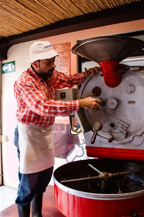 We recommend booking britt coffee tour tours ahead of time to secure your spot. Costa Rica Coffee Tour - Britt Coffee Tour - For the Love of Wanderlust in 2020 | Costa rica ...