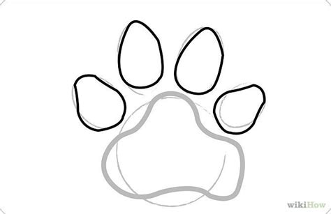 draw dog paw prints  steps  pictures