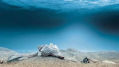 Underwater Ocean Sand Backgrounds Island Pixelstalk
