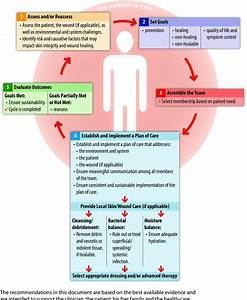The Wound Prevention And Management Cycle