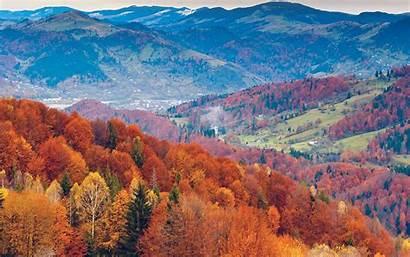 Fall Mountain Tree Nature Fun Desktop Orange