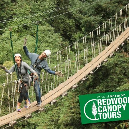 redwood canopy tours feeling like indiana jones here crossing one out of the