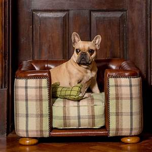 best dog beds for french bulldogs With top dog furniture