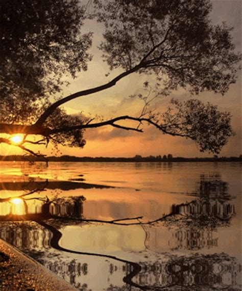 reflecting waters pictures   images