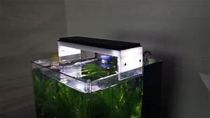 Led Lampe Selber Bauen : diy led lampe selber bauen seite 33 aquariumbeleuchtung aquascaping forum ~ Orissabook.com Haus und Dekorationen