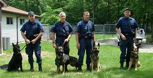 German Shepherd Police Training 2 Free Hd Wallpaper ...