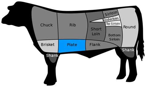 what is hanger steak hanger steak wikipedia