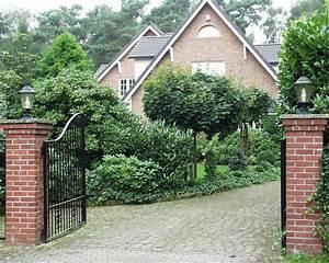 Sträucher Als Sichtschutz : immergr ne geh lze kraut r ben ~ Whattoseeinmadrid.com Haus und Dekorationen
