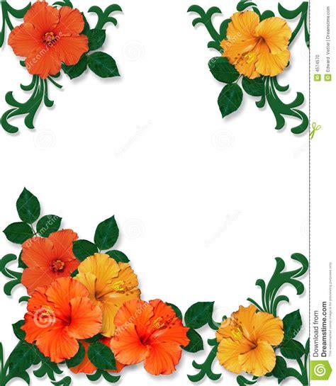 blank luau invitation borders    clipartmag