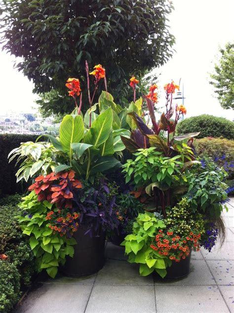 Modern Tropical Garden 2013  Tropical Landscape