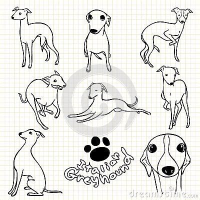 foto de Image result for greyhound character Greyhound art