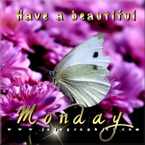 beautiful monday pictures   images