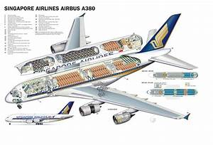 Singapore Airlines A380 Cutaway