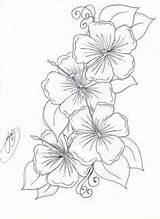 Hawaiian Lei Drawing Coloring Getdrawings sketch template