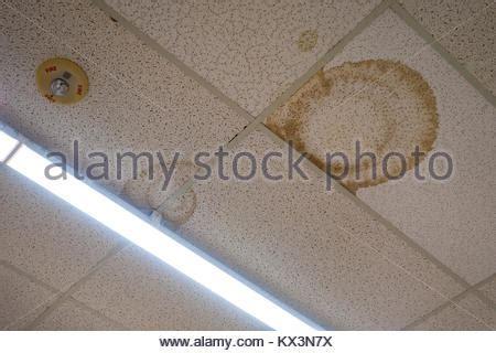 wasserflecken an der decke benetzen die wand stockfoto bild 310342436 alamy