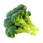 cuisiner le brocolis cuisiner le brocoli recettes bienfaits et calories