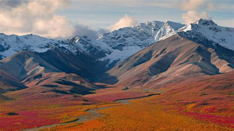 Denali National Park Alaska 844055