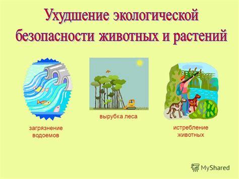 Киотский протокол к Рамочной конвенции Организации Объединенных Наций об изменении климата Киото 11 декабря 1997 г. . ГАРАНТ