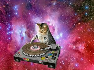 cat dj cats in space caterville