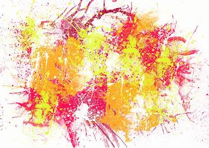 Paint Spray Painting Brush Background Abstract Cat