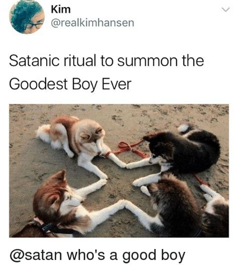 Good Boy Memes - 25 best memes about summon summon memes