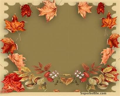 Fall Lovely Season