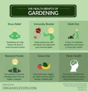 benefits of community gardens loatree community gardens cultivating opportunities