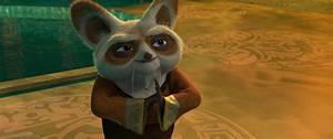 Kung Fu Panda Characters Shifu