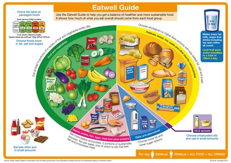 guide cuisine safefood the eatwell plate