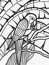 Parrot Coloring Pages Rainforest Amazing Adult Colouring Parrots Birds Print Adults Bird Mosaic Animal Colornimbus sketch template