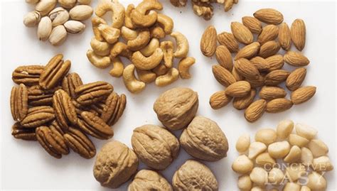 Can Eating Too Many Nuts While Pregnant Make Your Baby