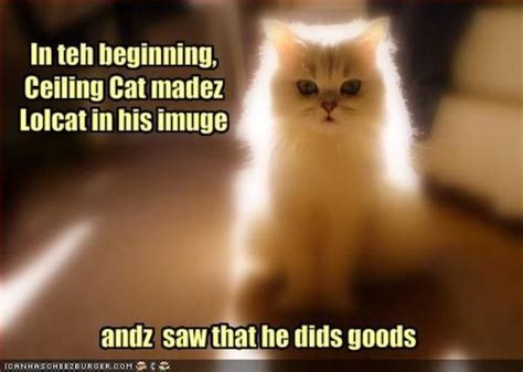 Ceiling Cat Meme - image 9722 ceiling cat know your meme