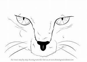 Step by Step How to Draw Scary Cat Eyes ...