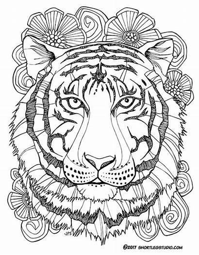 Tiger Coloring Mandala Pages Adults Sheets Fauna