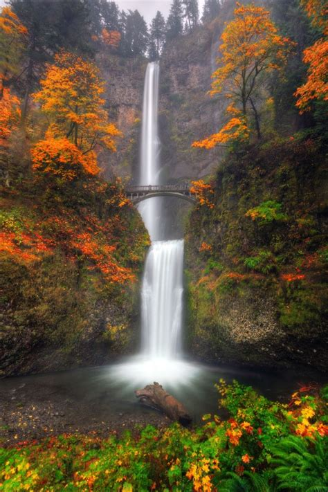 Multnomah Falls With Autumn Colors Leaves Turn Brown And