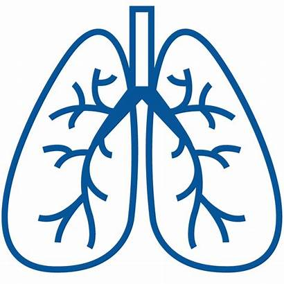 Clipart Copd Respiratory System Lungs Disease Chronic