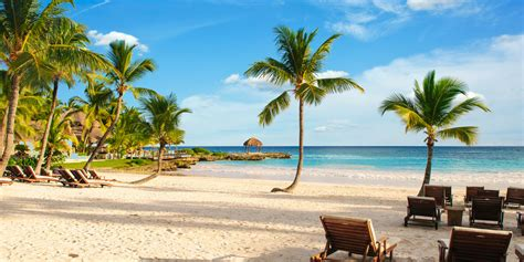chaise longue plage 5 best grand cayman beaches huffpost