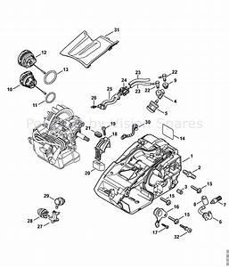 Stihl Engine Diagram
