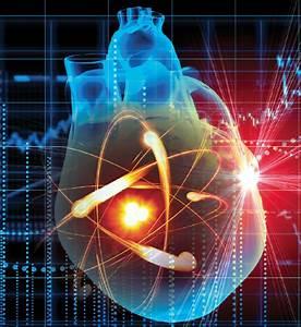 Solving Biology's Mysteries Using Quantum Mechanics ...  Quantum