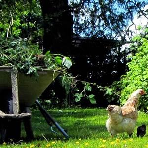 Moos Im Garten : ferienhof moos unsere st rke ist unsere natur ~ Pilothousefishingboats.com Haus und Dekorationen