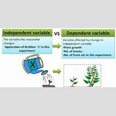 What Are Dependent And Independent Variables?  Statistics, Data Science, Machine Learning And