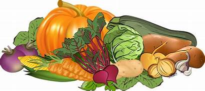 Vegetables Clipart Winter Clip Vegetable Clipground