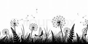 Bild Pusteblume Schwarz Weiß : sommer feld mit gras und l wenzahn in schwarz und wei stockfoto colourbox ~ Bigdaddyawards.com Haus und Dekorationen