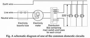 Draw A Schematic Labelled Diagram Of Domestic Electric Circuit