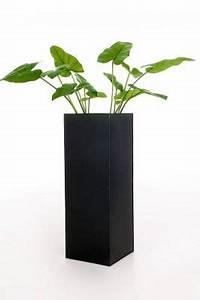 Pflanzkübel Mit Bewässerungssystem : einzel zink blumenk bel block 100 cm bew sserungssystem anthrazit ~ Frokenaadalensverden.com Haus und Dekorationen