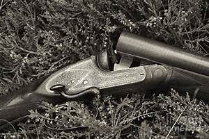 Stephen Grant And Sons Side Lever Twelve Bore - D003359-bw ...