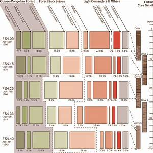 Archaeology And Conservation In The Tropical Forests Of