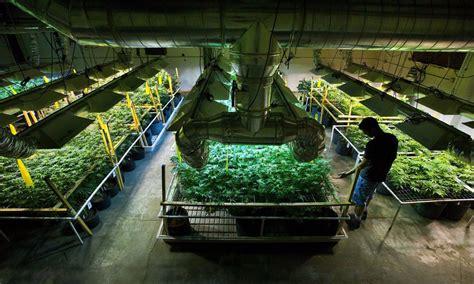 chambre de cannabis extracteur d air silencieux la revue complète des solutions