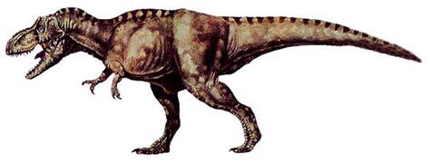 dinosaur facts types  dinosaurs